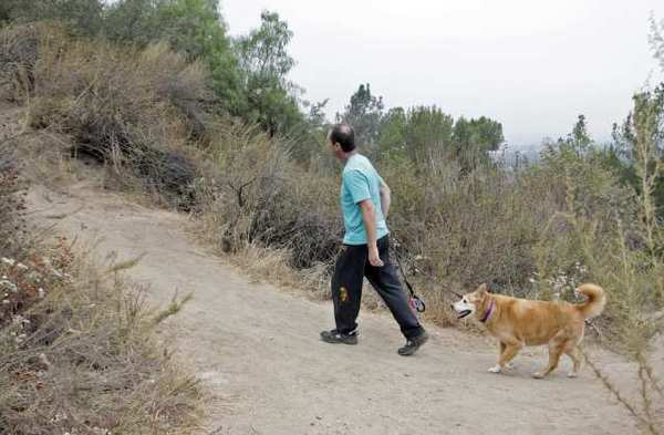 A hiker and his dog head up a trail at Brand Park in Glendale. A hiker who got lost on one of the trails Monday night had to call authorities for help.