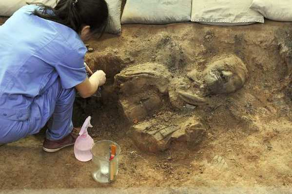 A terracotta warrior is unearthed recently at an excavation site in China.