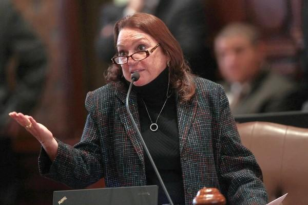 State Sen. Suzi Schmidt, R-Lake Villa, faces misdemeanor charges of trespassing and damage to property after neighbors accused her of harassing them over an alleged affair.
