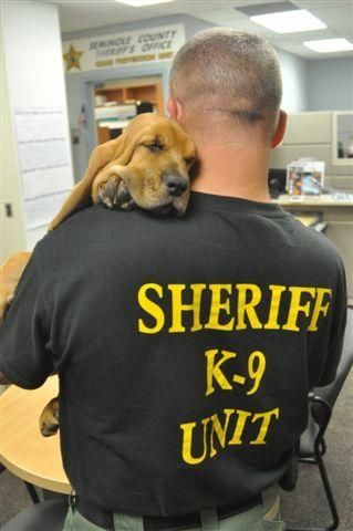 The new Seminole County Sheriff's Office bloodhound puppy will be named by the community.