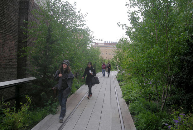 Thick vegetation dominates some spots along the High Line Trail in New York City.