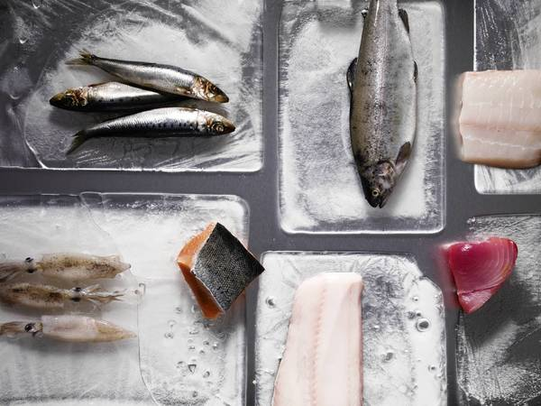 Officials say guidelines are needed to address health, environmental and economic effects of fish choices.