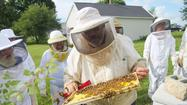 Photo Gallery: Lincoln County Beekeepers