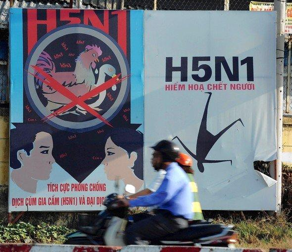 A poster in Ho Chi Minh City, Vietnam, warns people about bird flu. Scientists have created versions of the bird flu virus that are easily transmissible among mammals.