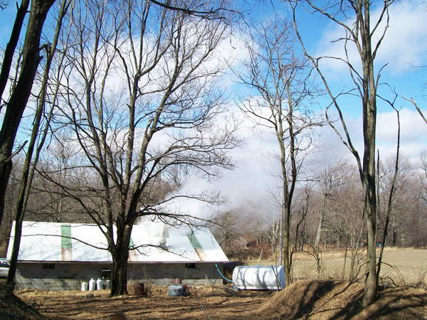 A view of the Sanners' maple sugar camp in Rockwood. The Sanners boiled nearly 2,500 gallons of syrup in the 2012 season.