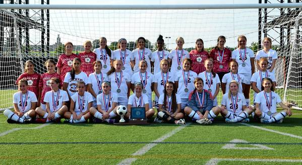 Whitehall is The Morning Call's 2012 girls soccer team of the year.