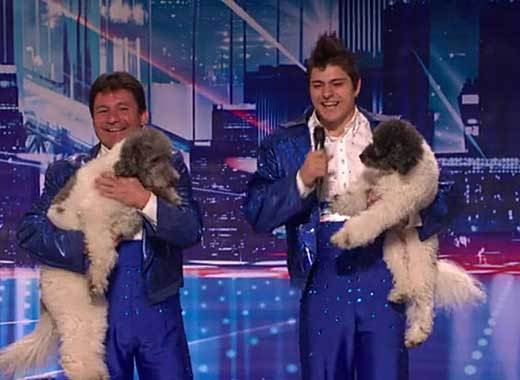 'America's Got Talent' Season 7 semifinalists: Olate Dogs, animal act