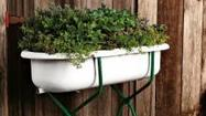 "This year make your gardening experience an environmentally friendly one with five innovative ideas from the <a title=""http://www.greenbrideguide.com/"" href=""http://www.greenbrideguide.com/"" target=""_blank"">Green Bride Guide</a>."