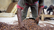 Nestle promises action on Ivory Coast child-labor violations