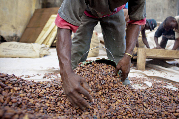 Nestle said it will work to eradicate child labor in its cocoa supply chain in the Ivory Coast.