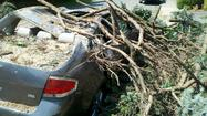 PHOTOS:  Wind Damage from 6/29/12 Storm