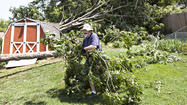 Pictures: Storm damages in Newport News