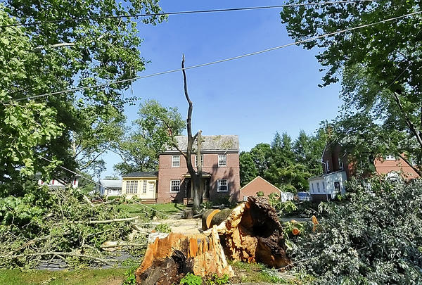 Downed wires and uprooted trees make the scene after a Friday night storm swept thru Martinsburg.