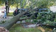 Pictures: Howard County storm damage
