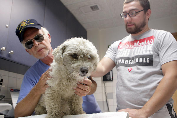 Rescuers Ed Kostro, left, and Jose Terriquez look over a stray dog at the Pulaski Animal Hospital after it led rescuers on a chase through traffic on the Stevenson Expressway.