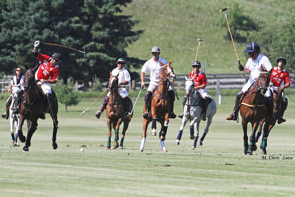 Four riders on each team drive for recovery of a loose ball, as Orchard Hill (red) plays the Bliss Polo Club (white) Sunday at the polo tournament in Bliss. Many competitors from southern states find the weather and the grounds here perfect for the hard-fought running game of polo.