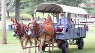 The annual Old-Fashioned July 4th Celebration at the Carroll County Farm Museum will begin at noon on Wednesday, July 4, and last into the evening for the traditional fireworks show over Westminster.