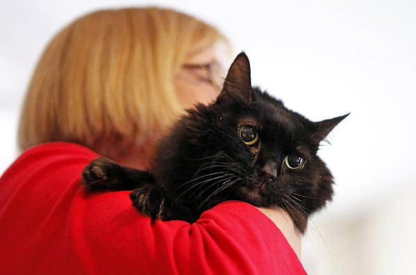 Diane Maxwell from Missouri picks up her new cat, Boots, from a cat rescue, in Chicago.