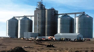Grain terminal near Tulare running smoothly