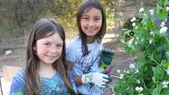 While some elementary school students learn about plants from a textbook, Top of the World students get to learn first-hand by earning a green thumb in its outdoor classroom.