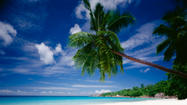 10. Seychelles is an island nation of 155 tropical islands in the Indian Ocean.