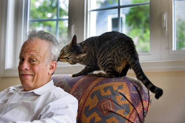 Dr. Robert Yolken of Johns Hopkins University with his cat, Tibby. A study suggests a link between a parasite found in some cats and an increased risk of suicide in women -- but researchers emphasize there's little evidence pet owners should worry. Most infected people probably got it from undercooked meat.