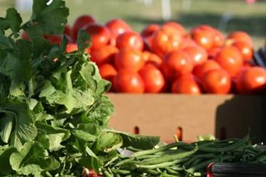 Locally grown produce is ripe and ready to take home at the Yorktown Farmers Market Saturday mornings.