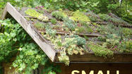 "The new book ""Small Greeen Roofs"" shows and tells how to do green roofs on small surfaces."