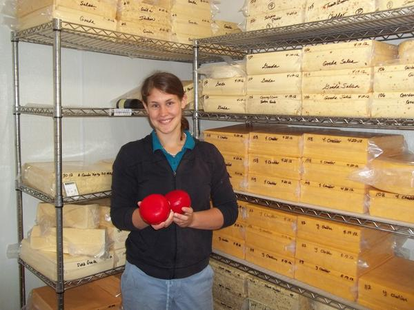 "Hannah Van Grouw stands in front of some of the ""younger"" cheese in the Van Grouw cheese cooler while she displays two of the traditional Dutch Gouda Cordoba molds which are encased in wax."