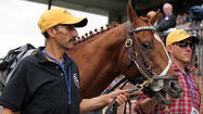 "Veterinarians who examined Preakness winner I'll Have Another before and after the race at <a href=""http://findlocal.baltimoresun.com/pimlico/home/na/pimlico-race-course-baltimore-venue"">Pimlico Race Course</a> said this week that he was healthy and that his medication regimen was not unusual."