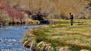 Trout fishing in Mammoth Lakes