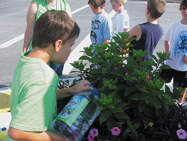 Robert, a student at Rehoboth Learning Center, waters one of the plants near Town Hall in Williamsport. The center's children have been doing community service activities, even though they are on summer break.