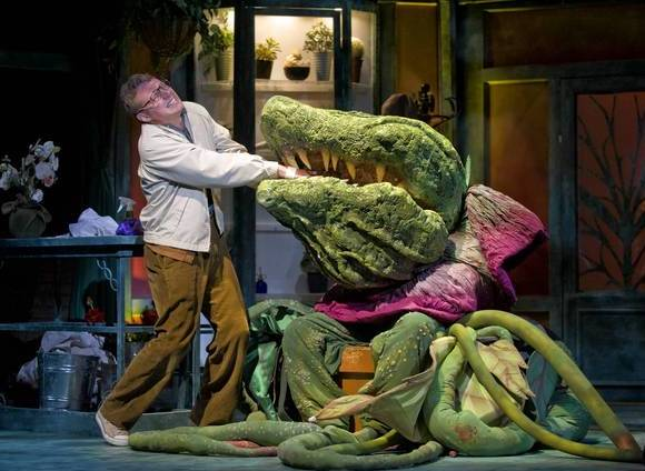 "Jonathan Lee Cunningham is Seymour in ""Little Shop of Horrors"" at Theatre at the Center."