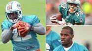Reggie Bush silenced his critics last season, proving that he could shoulder the load as an NFL featured back for the Miami Dolphins in 2011.