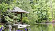 """In order to comprehend the beauty of a Japanese garden, it is necessary to understand — or at least to learn to understand — the beauty of stone."" — Patrick Lafcadio Hearn (1850-1904)"
