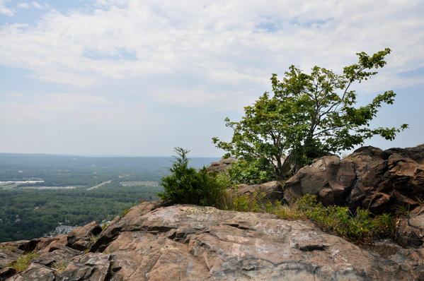 This 1800-acre park is located in the Hanging Hills, a trap rock mountain range in Meriden.