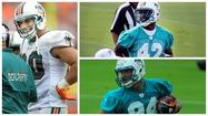 Miami Dolphins position breakdown: Tight ends