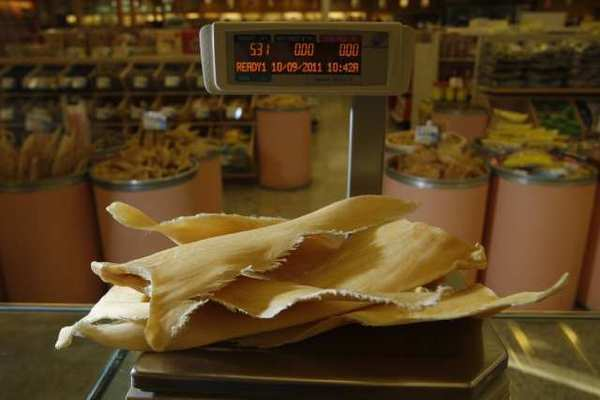 Dried shark fins at a specialty Chinese store. A San Francisco Chinese American group is suing to overturn a state ban on the product