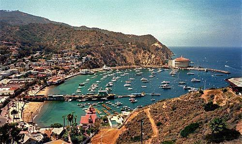 From the hills, the harbor at Avalon on Santa Catalina Island spreads out below, with the Casino Ballroom in the distance at right. Come winter, when tourism plummets to a fraction of its fair-weather numbers, Catalina becomes something of a secret getaway.