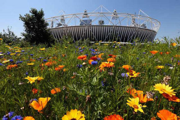 Flowers bloom outside Olympic Stadium.