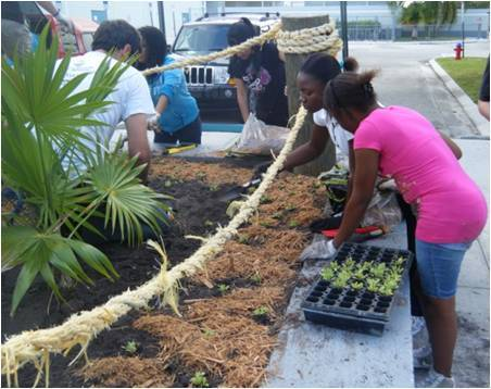New River Middle School students install a native wildflower garden in a raised bed.