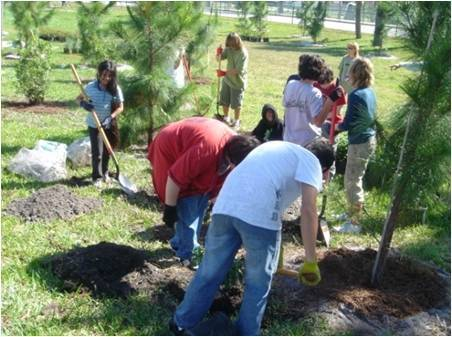 Deerfield Beach Middle School students install a native wildflower garden and a National Wildlife Federation Certified Schoolyard Habitat within the bus loop on their campus.