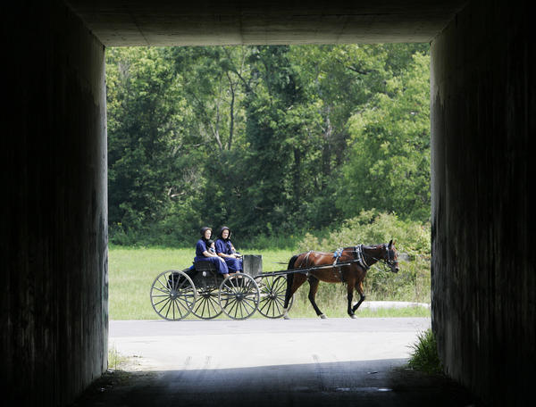 "<b>Distance from Baltimore:</b> 70 miles, about a 2-hour drive<br> <br> <b>Why it's worth the gas:</b> The Amish have lived in the Lancaster area since the early 1700s, when Anabaptists -- Christians believing in adult baptism, such as the Amish and their less strict cousins, the Mennonites -- fled religious persecution in Europe and landed in <a class=""taxInlineTagLink"" id=""PEHST001555"" title=""William Penn"" href=""/topic/arts-culture/william-penn-PEHST001555.topic"">William Penn</a>'s new colony, which promised tolerance. Today, there are 14 towns & villages in Lancaster County and many opportunities to explore Amish country. Visitors can get a glimpse of the Amish lifestyle by going on a tour of an Amish home, schoolhouse, and barn. You can also go on Ale, Dairy, Market, and Winery trails or eat at some of the restaurants in downtown Lancaster.<br> <br> <b>Don't miss:</b>: Amish Country Homestead at Plain & Fancy Farm- The only Amish home available for touring in Lancaster County. Tour guides will explain the lifestyle of an Amish family by discussing their clothing, living without electricity, and learning in a schoolhouse. Visitors can also do a more intimate tour in which they can talk to Amish families in their home. Tickets range from $34.95 to $49.95<br> <br> <b>Information:</b> Visit www.padutchcountry.com or call 1-800-723-8824."