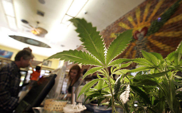 The Los Angeles City Council voted Tuesday to ban medical marijuana shops.