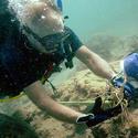 2012 lobster miniseason
