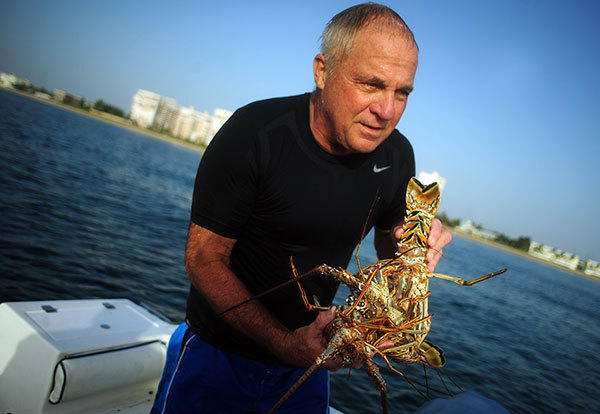 Bill Dennis of Lighthouse Point, carries several Florida Spiny Lobsters he bagged, Wednesday, July 25, 2012, offshore at Lauderdale-by-the-Sea .