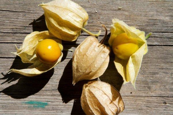 Peel off the husks ground cherries and you'll find fruit that's a mix of tart and sweet.