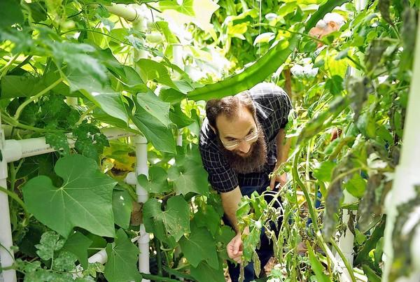 Jason Berger, a 28-year-old Huntington Beach resident, makes wine from yellow itahaya, also known as yellow dragonfruit, that his father, Steve grows in the family's garden. The wine was entered in the Orange County Fair this year.