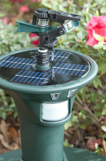 Havahart Elite Spinkler needs no hose connection to detect and spray unwanted animals out of your yard.