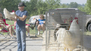 Mercer County Fair sheep, poultry and floral hall results